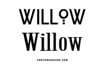 Willow Font Family Free Download