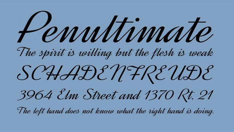 Dynalight Font Free Download