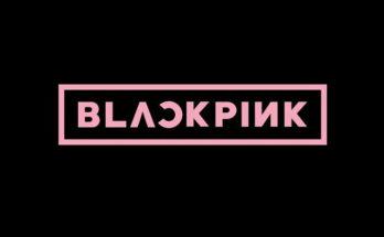 Black Pink Font Family Free Download