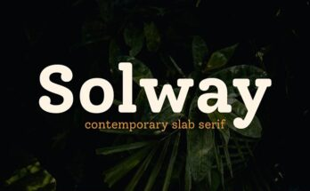 Solway Font Family Free Download