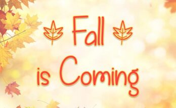 Fall is Coming Font Family Free Download