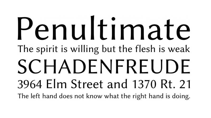 Linux Biolinum Font Family Download
