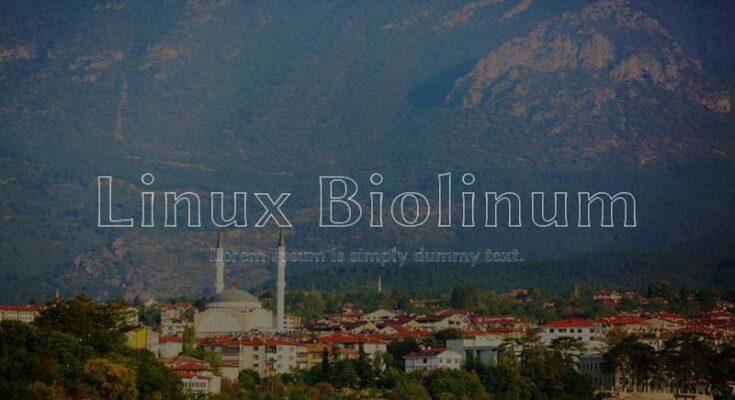Linux Biolinum Font Family Free Download
