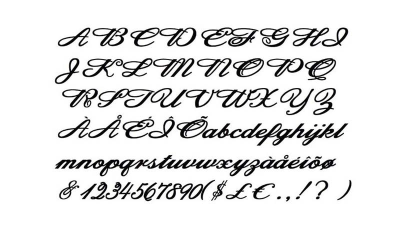 Budweiser Font Family Download
